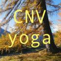 CNV et autres approches | CNV, Yoga et nature | Stage résidentiel dans les Grisons | Vincent Delfosse