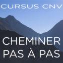 CURSUS : Cheminer pas à pas avec la CNV | Pascal Gremaud