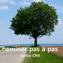 CURSUS : Cheminer pas à pas avec la CNV | Fabienne Poscia