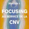 CNV et autres approches | CNV et Focusing, Module 1 | Hélène Domergue-Tappolet