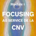 CNV et autres approches   CNV et Focusing, Module 1   Hélène Domergue-Tappolet