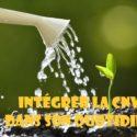 Cursus : Intégrer la CNV dans son quotidien | Angela Boss
